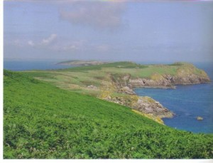 saltee_islands_wexford
